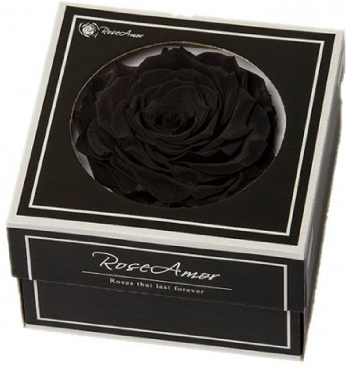 Zwarte rozen kop XXL geconserveerd in cadeaubox kopen