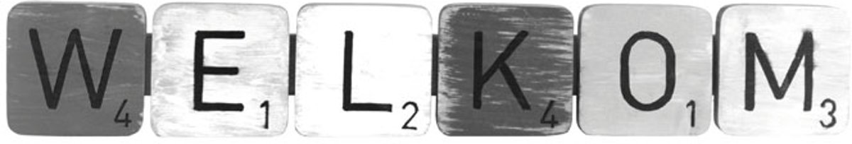 """Hanger Letters """"welkom"""" Calm 47x8 kopen"""