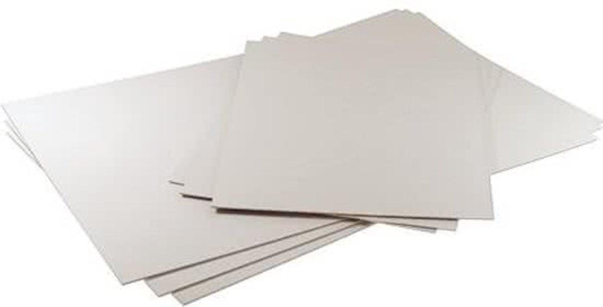 Achterkarton met Archiefbestendig Oppervlak 27.9x35.6cm (25 Stuks) [BACH11] kopen