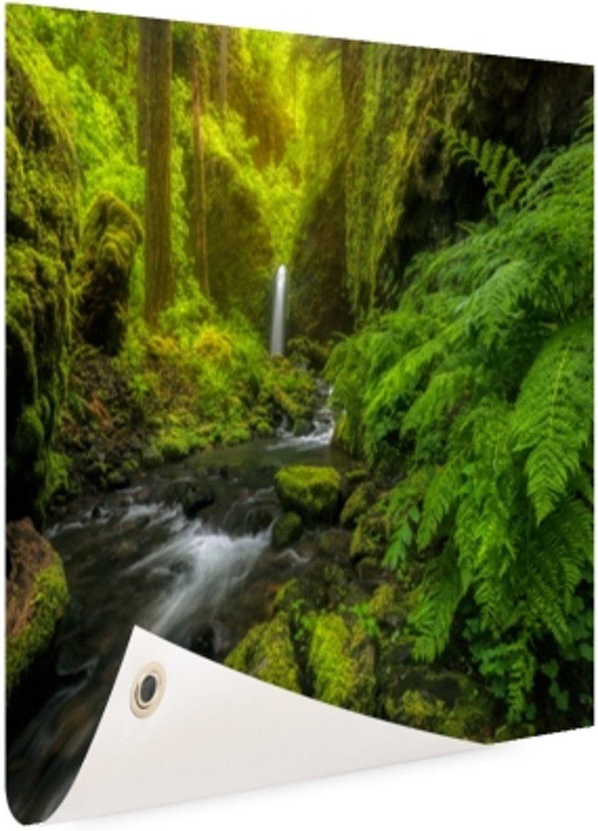 Prachtig plaatje jungle Tuinposter 60x40 cm - Foto op Tuinposter (tuin decoratie) kopen