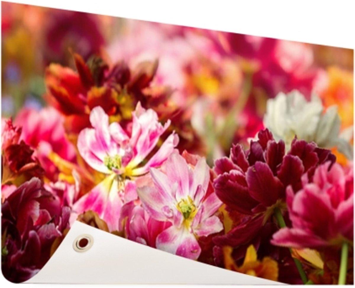 Mutli gekleurde tulpen Tuinposter 200x100 cm - Foto op Tuinposter (tuin decoratie) kopen