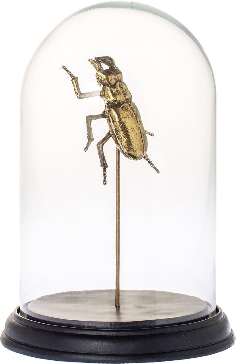 Stolp Bug goud 27cm kopen