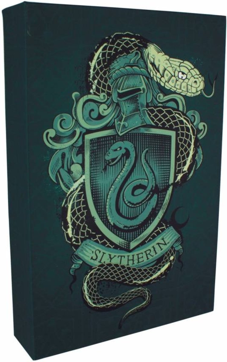 Harry Potter: Slytherin - Luminart - Poster kopen