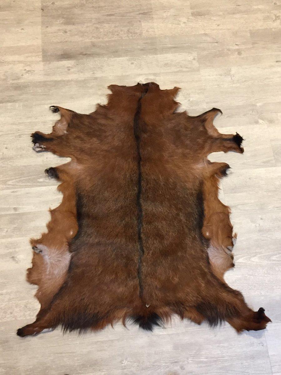 25. Geitenhuid / Geitenvacht 86 x 100 cm kopen