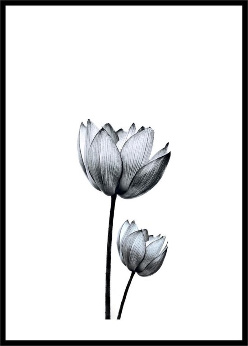 Black and White Flower Print - Minimalistic Wall Art kopen