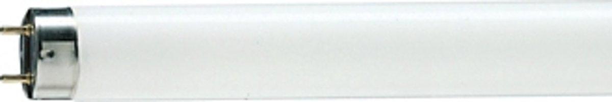 Philips TL-D 16W 16W G13 Wit fluorescente lamp kopen