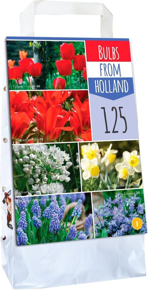 XXL draagtas uit Holland - 125 bloembollen - 6 soorten kopen