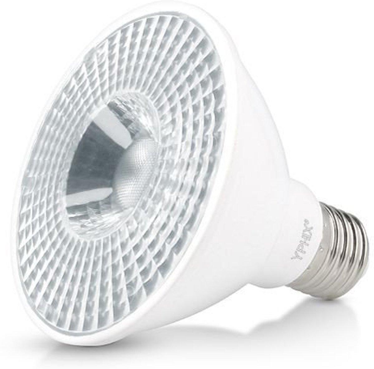 PAR 30 S LED SPOT POLLUX 11 WATT E27 DIMBAAR, 3000K (VERVANGT 75W) kopen