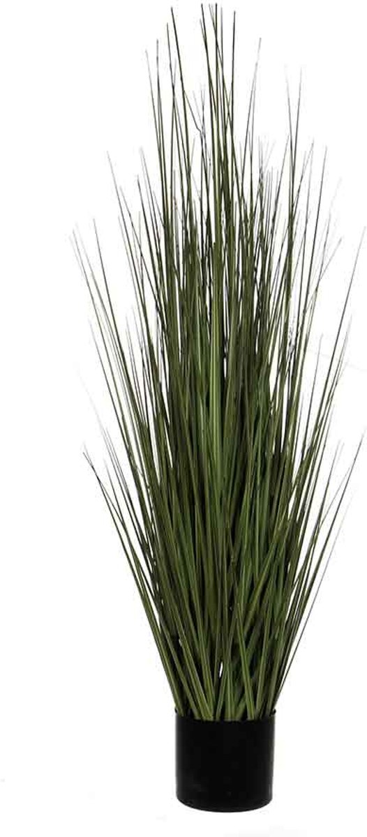 Mica Decorations gras in pot maat in cm: 122 x 35