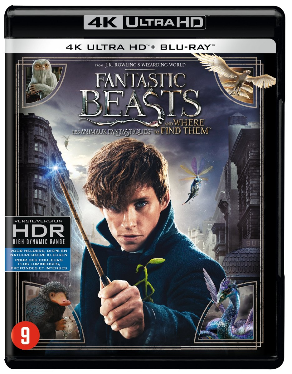 Fantastic Beasts and Where to Find Them (4K Ultra HD Blu-ray)-