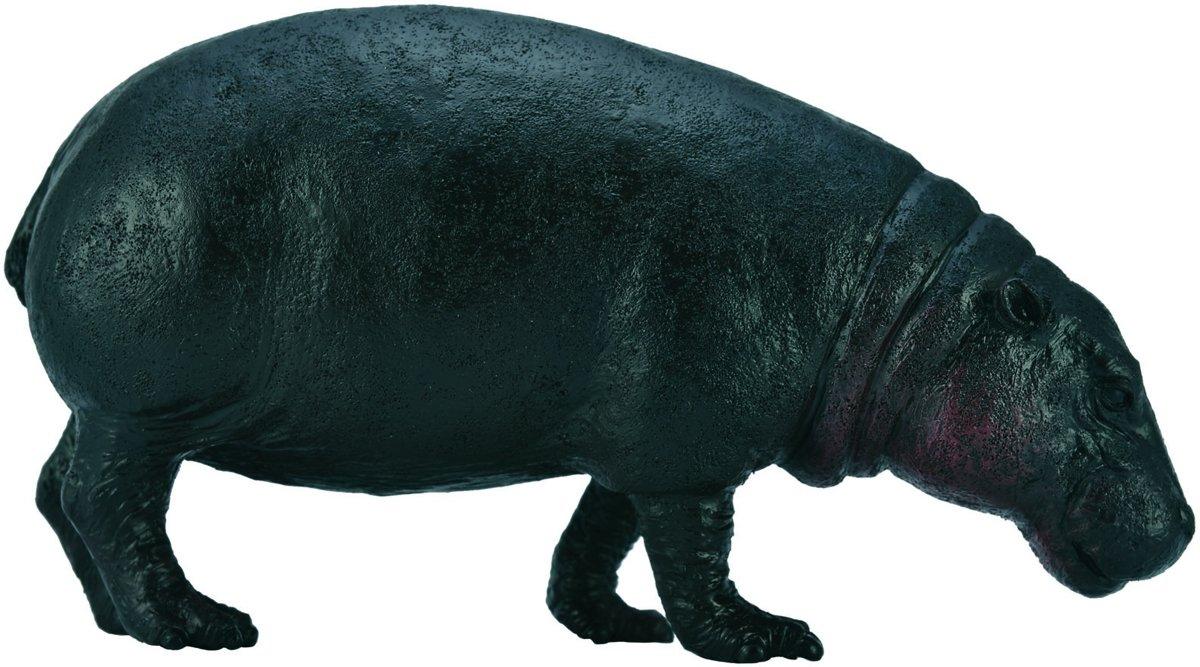Collecta Wilde Dieren Dwergnijlpaard 10.5 X 5.5 Cm kopen