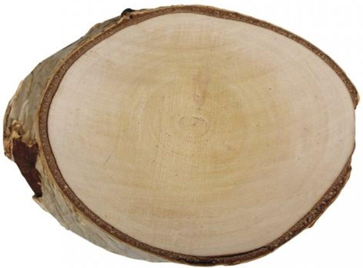 Afbeelding van product Rayher Hobby  1x houten boomstam/berken schijf Ø 15 tot 17 cm - 2 cm dik