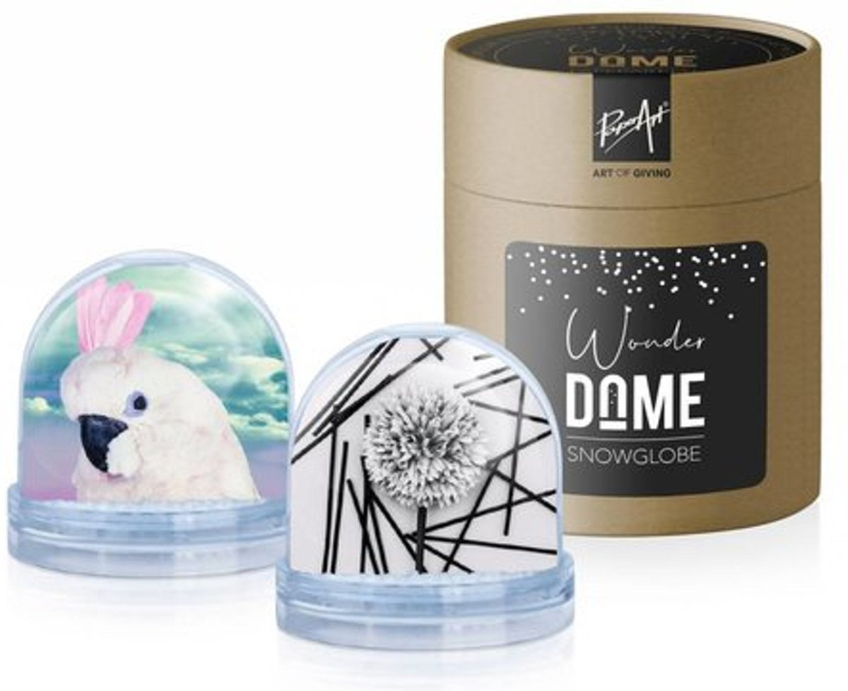 Sneeuwbol 'Wonder Dome' - Vogel & Bloem kopen