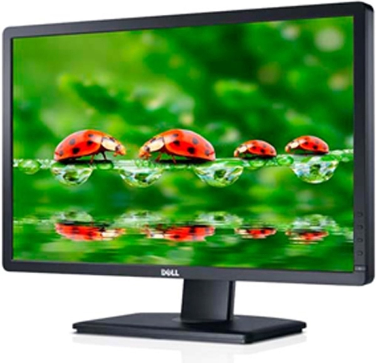 Dell P2412H - Monitor - 24 inch Monitor - REFURBISHED