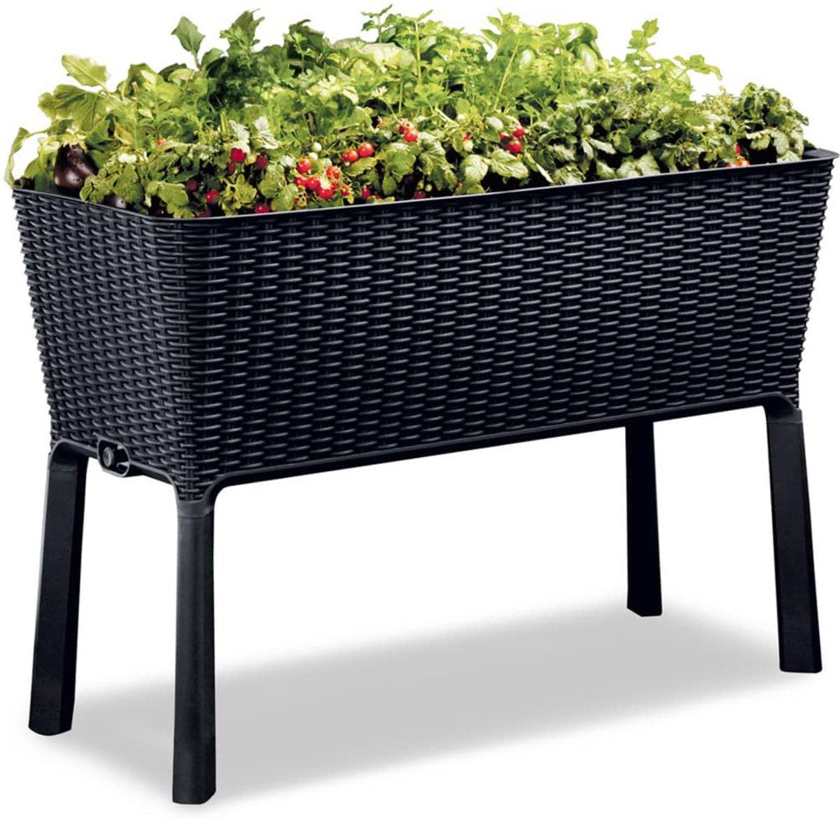Keter plantenbak Easy Growing 120 L 229098 kopen