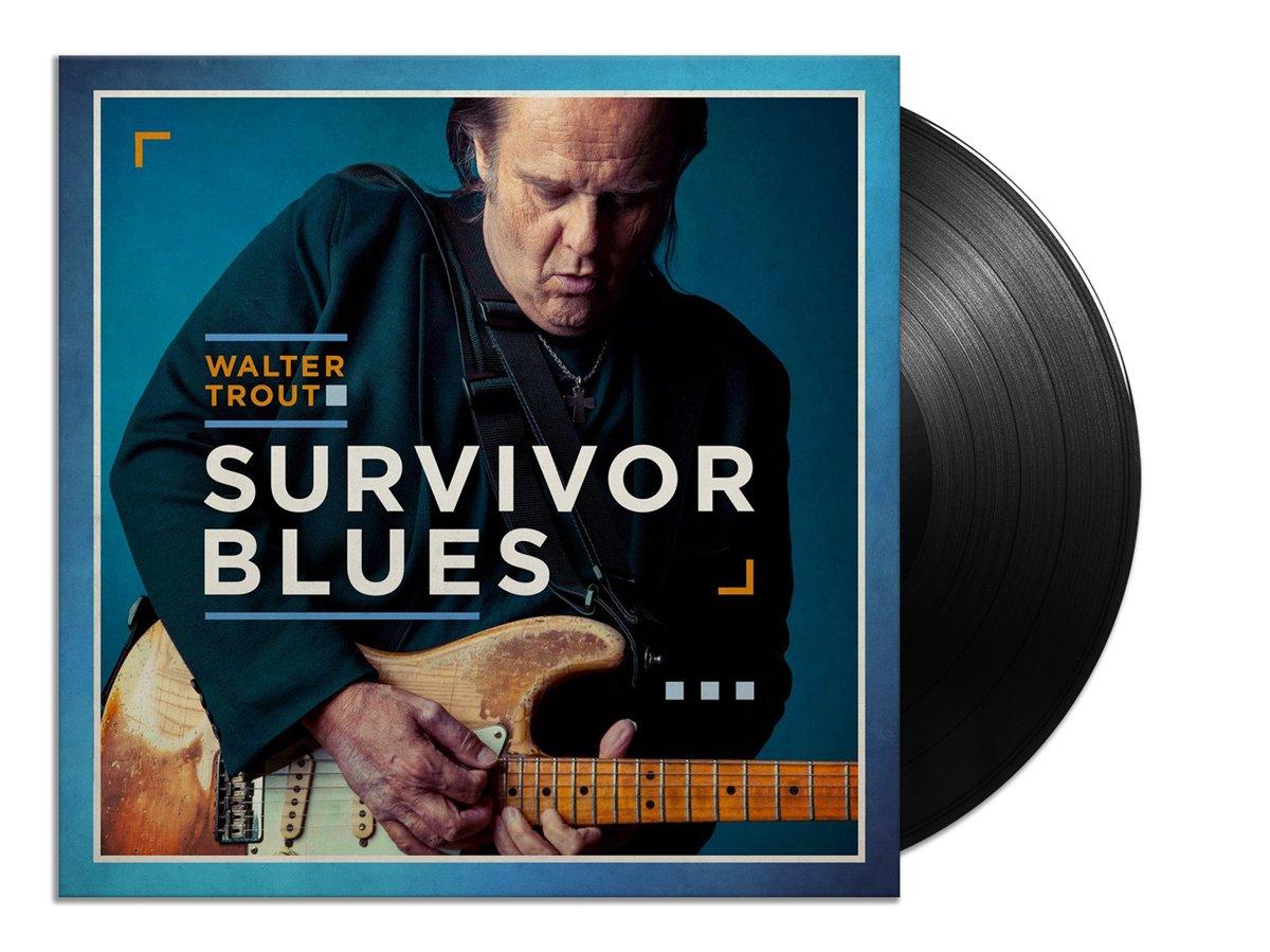 Walter Trout - Survivor Blues (HQ)   LP kopen