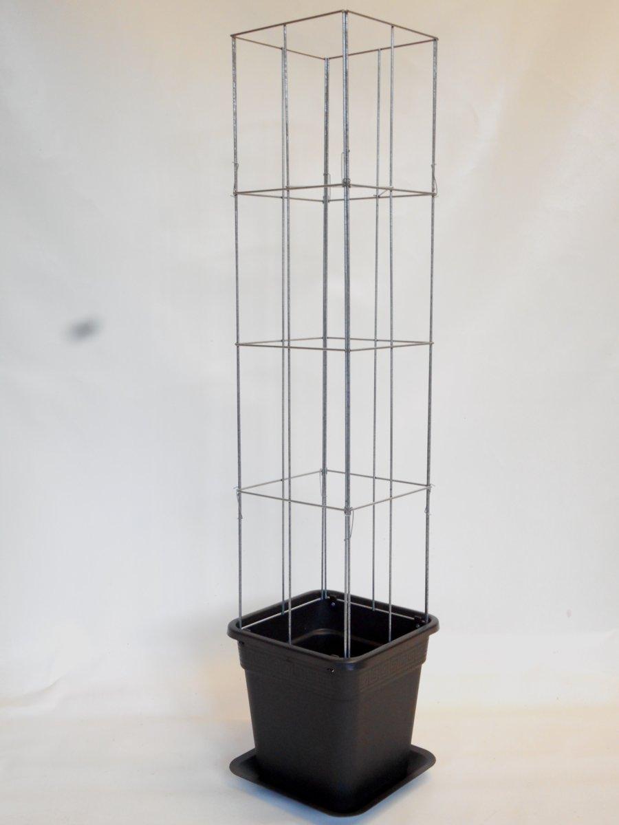Klimplantensteun draadzuil plantensteun vierkant 1250 mm lang met pot en waterschotel