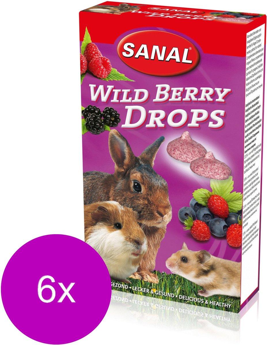 Sanal Wild Berry Drops - Knaagdiersnack - 6 x 45 g