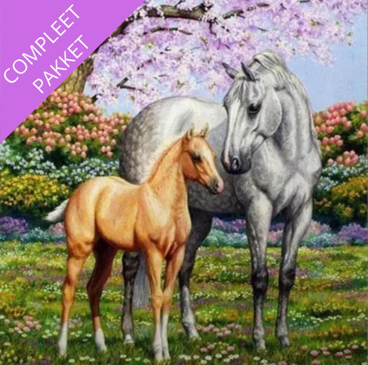 Afbeelding van product LACOM  Diamond Painting Paarden - Pakket voor Volwassen en Kinderen - Volledige Diamont Painting inclusief Assecoires