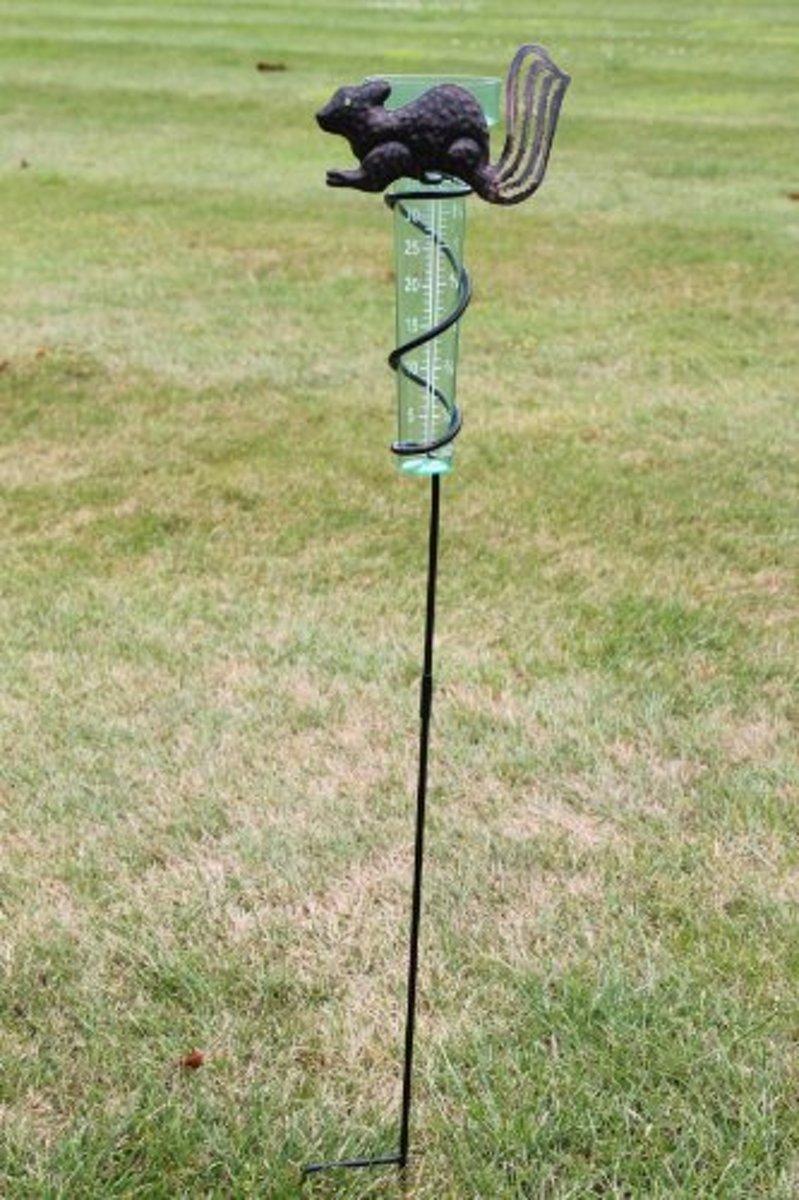 Regenmeter met leuke eekhoornhouder en plastic regenvanger kopen