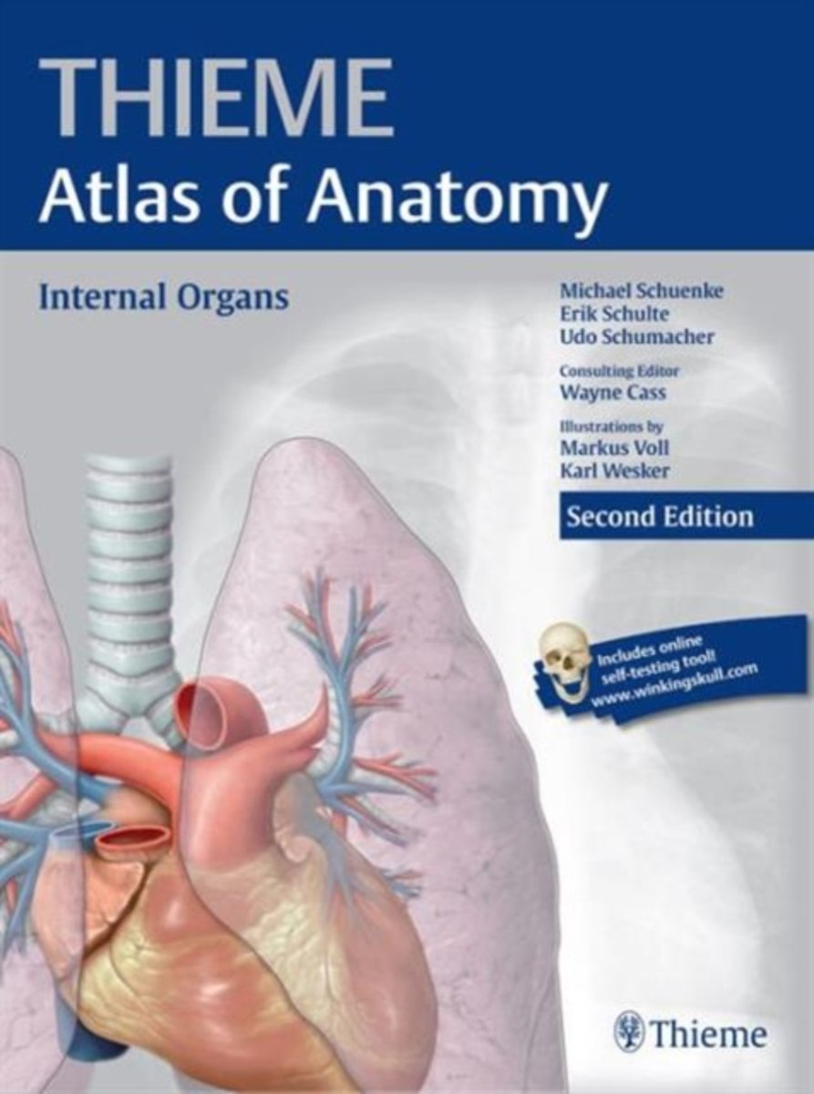 bol.com | Internal Organs (THIEME Atlas of Anatomy), Michael Schünke ...