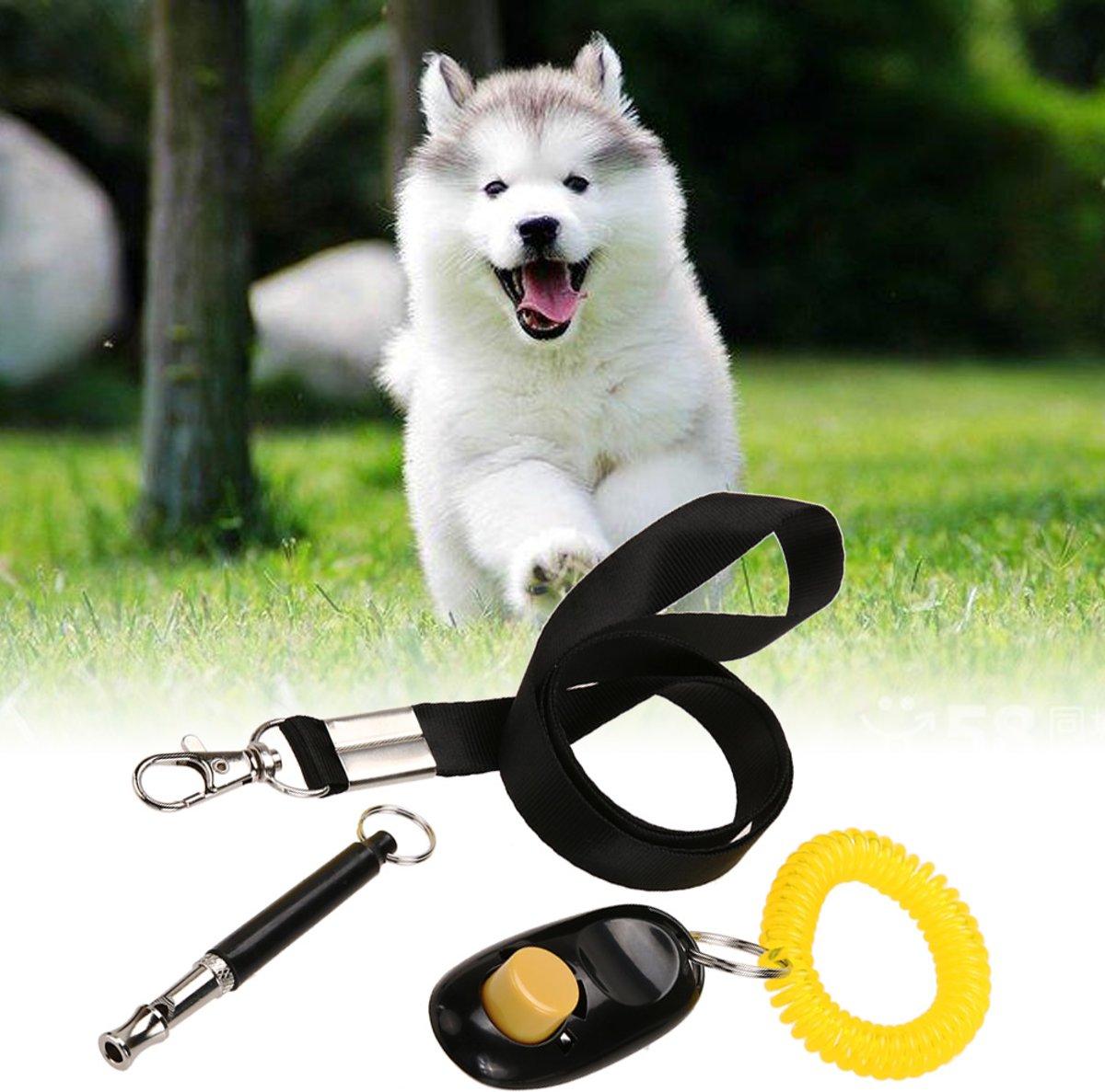 Handige 3-in-1 Hondenfluit | Professioneel | fluit kopen
