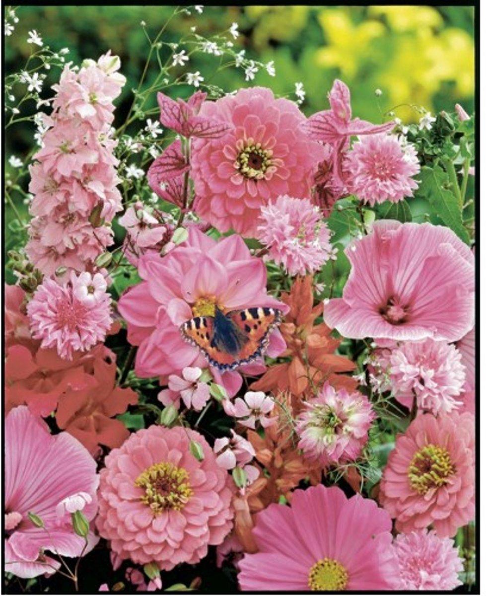 Veldbloemen Rode en Roze tinten 100 gram kopen
