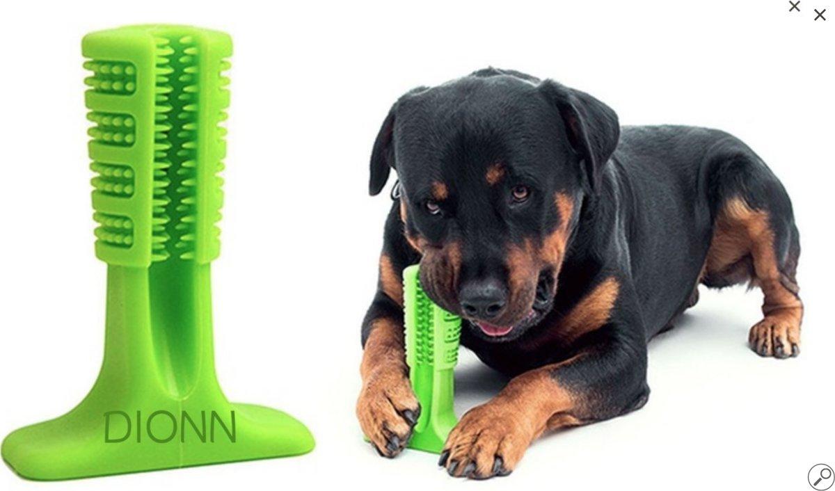 Premium Honden tandenborstel - Oral care - Green kopen