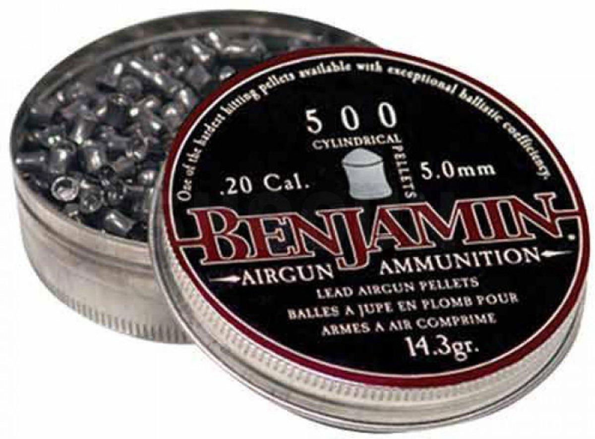 Afbeelding van product Benjamins  BENJAMIN 5.05 mm kogeltjes voor je buks