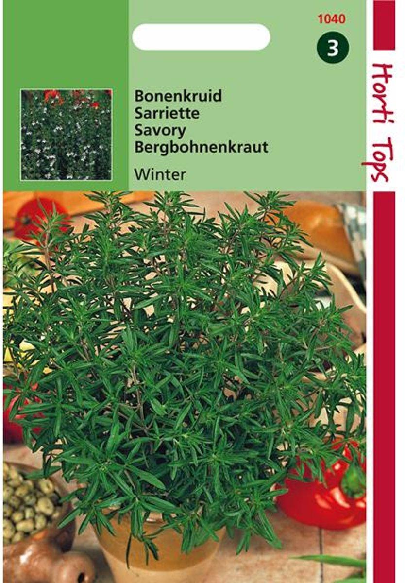 Bonenkruid - Satureja montana - set van 7 stuks kopen