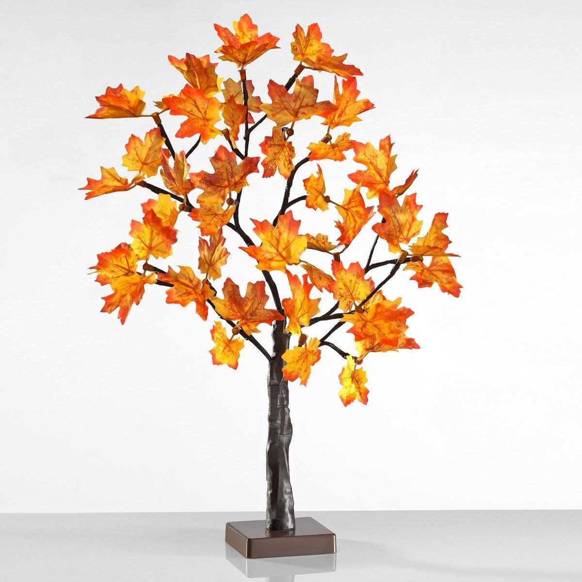 Led-herfstboom kopen