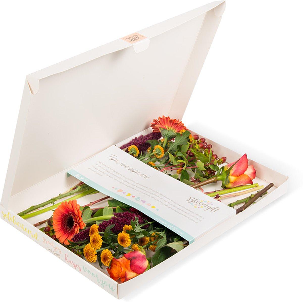 Brievenbusbloemen Oranje kopen