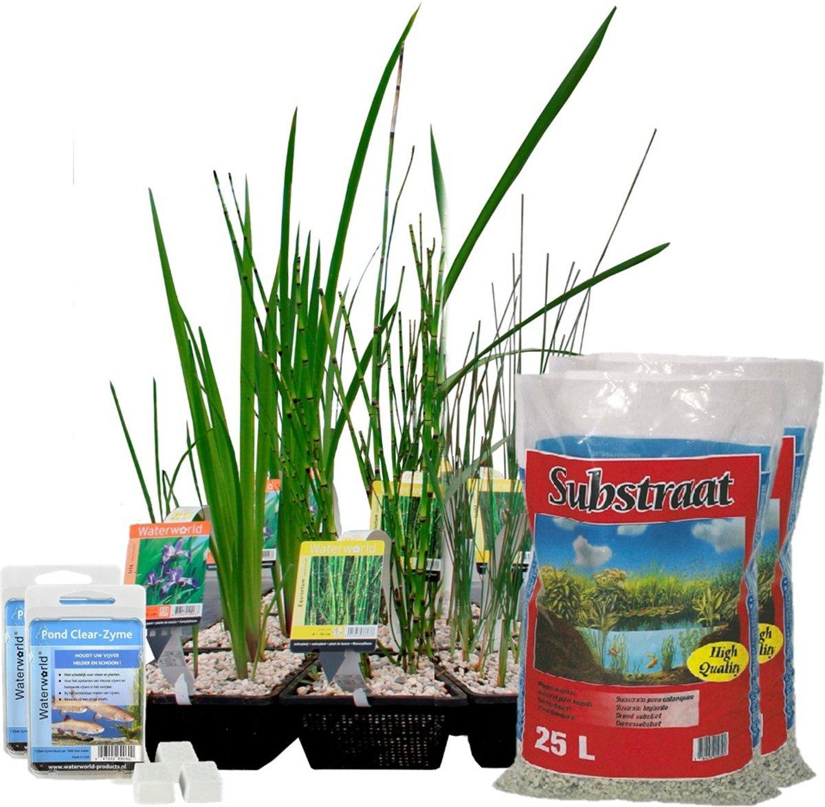 Waterworld Complete Vijver Starter Pakket - Kleine Vijver - Ca. 2m³ Water - 21 Waterplanten, Mandjes, Substraat en Bacterieën kopen