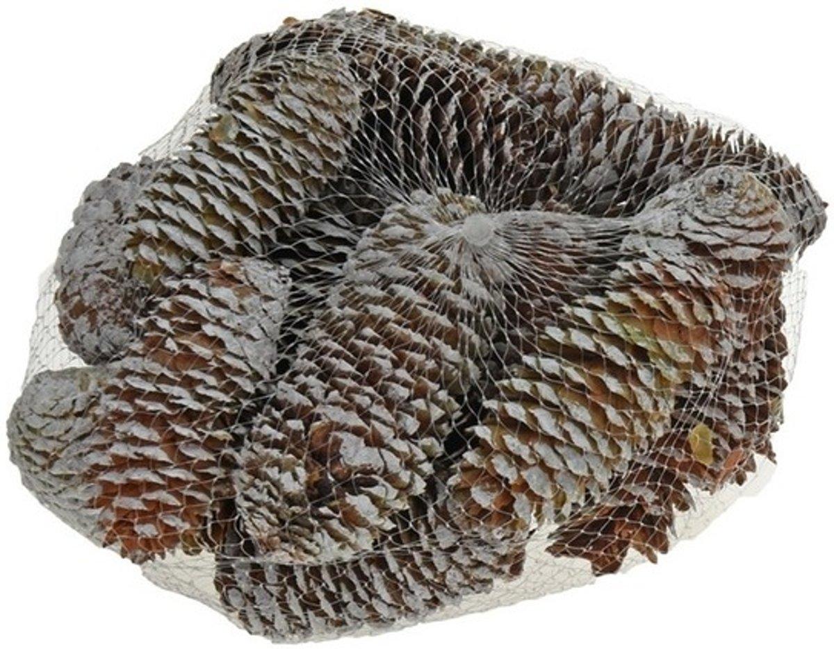 Decoratie dennenappels bruin/sneeuw 8 cm kopen