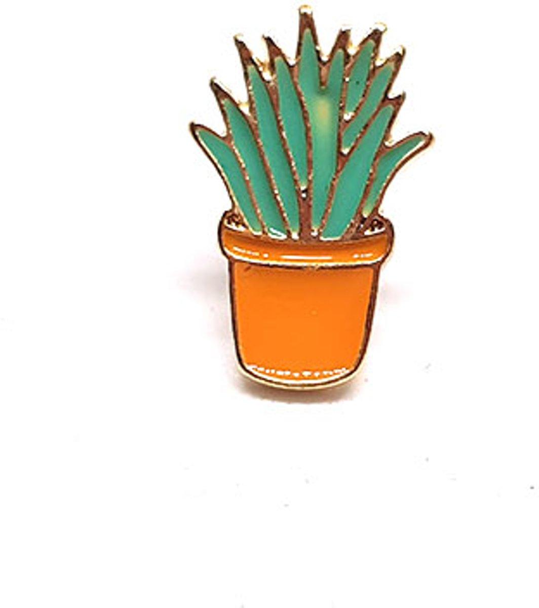 Groene vetplant - Broche kopen