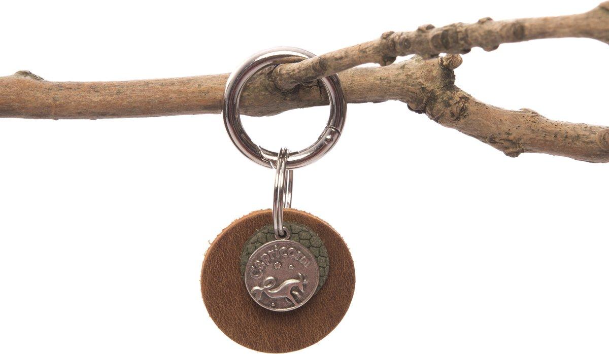 Sterrenbeeld Steenbok/Capricorn kopen