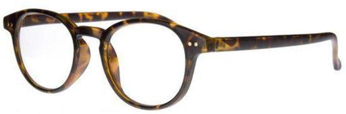 Icon Eyewear TCD003 Boston Leesbril +3.50 - Tortoise kopen