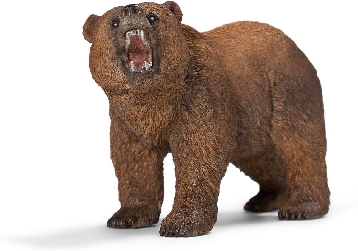 14685 Mannelijke Grizzlybeer