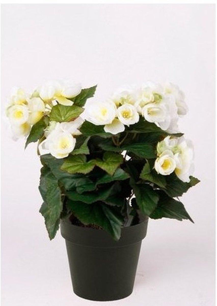 Kunstplant Begonia wit 30 cm kopen