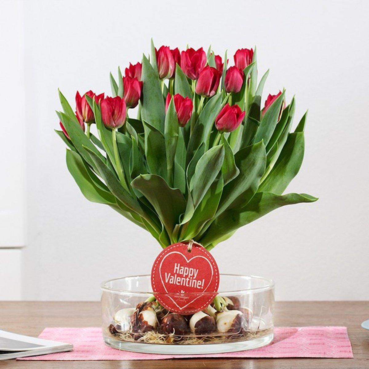 Bulb bouquet Rood kopen