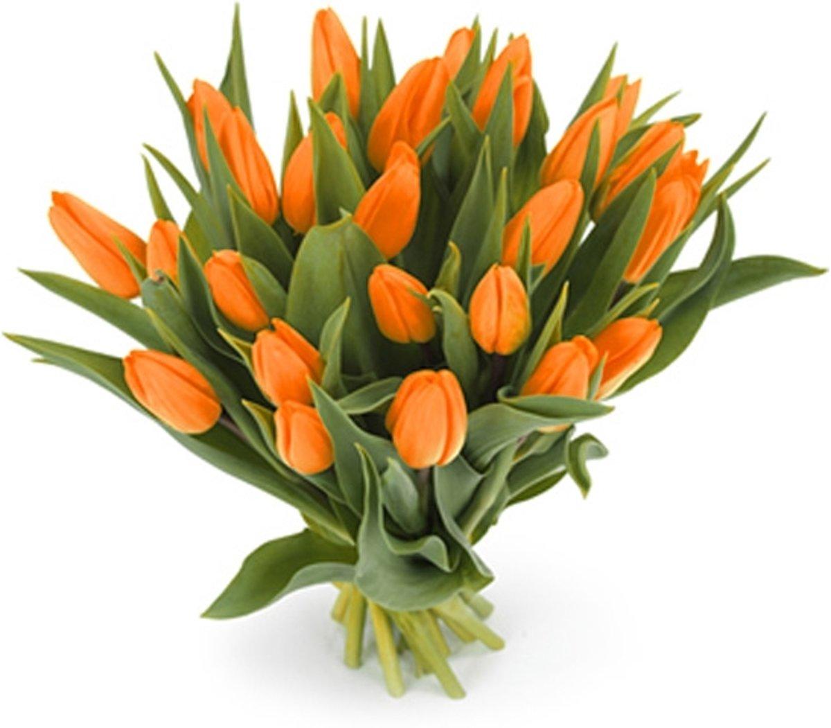 25 oranje tulpen boeket kopen