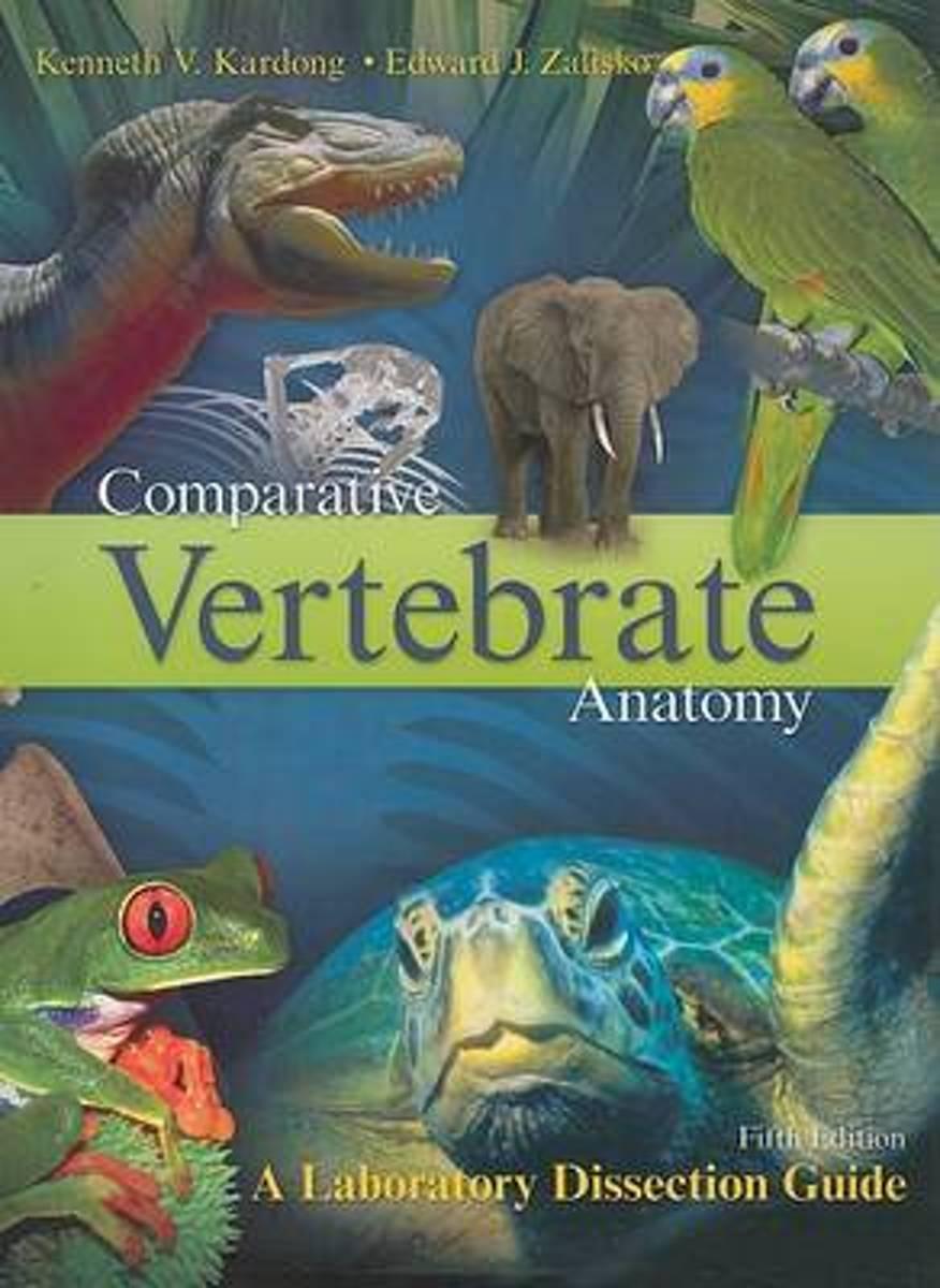 bol.com   Comparative Vertebrate Anatomy   9780072970081   Kenneth ...