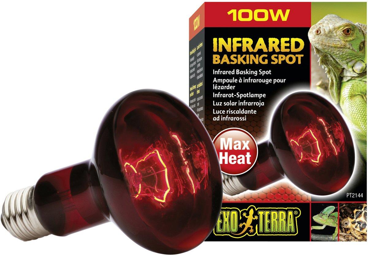 Exo Terra Infrared Basking Spot 100 Watt R25
