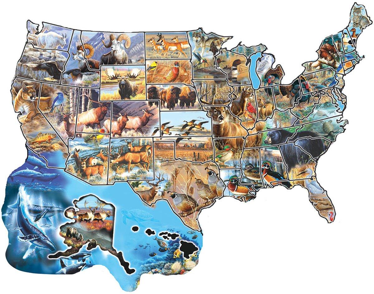 Afbeelding van product Legpuzzel - Contourpuzzel - 600 stukjes -Wild America - SunsOut