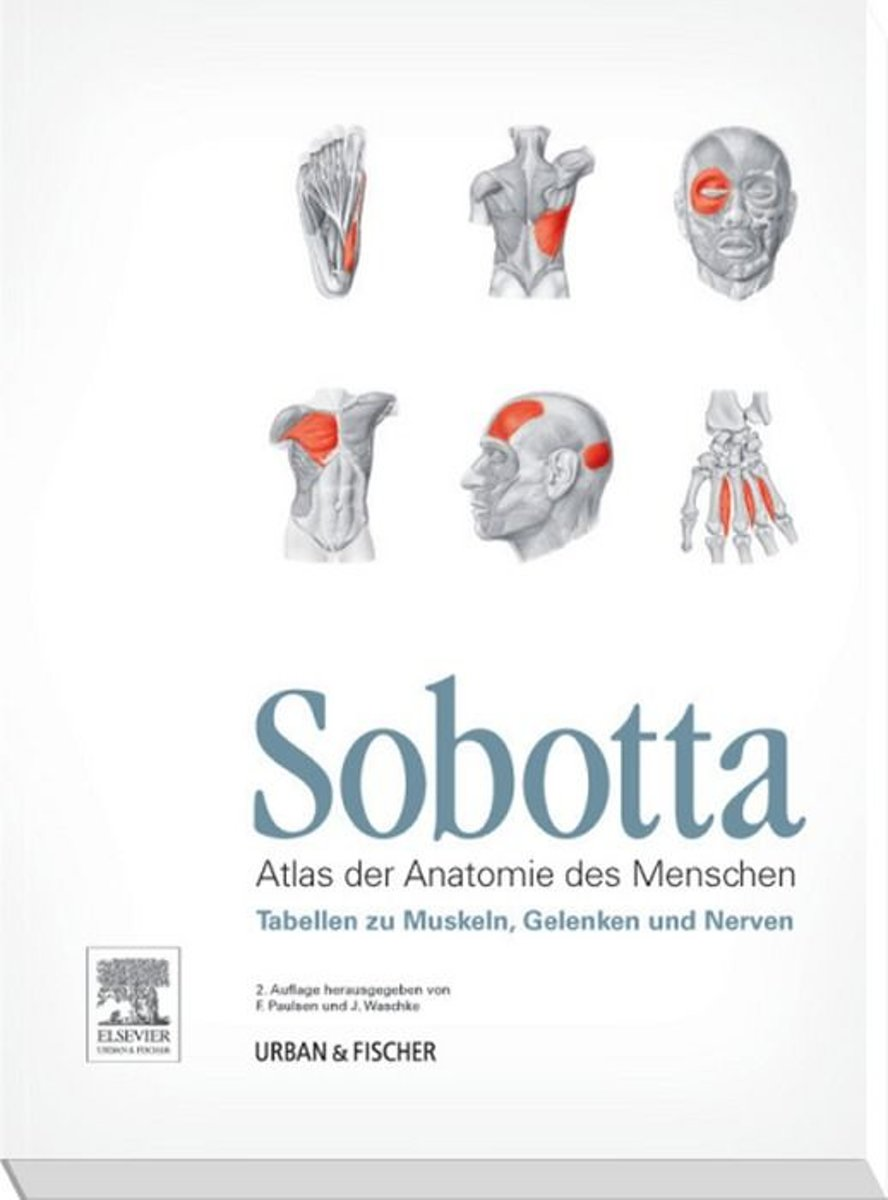 bol.com | Sobotta Tabellen zu Muskeln, Gelenken und Nerven (ebook ...