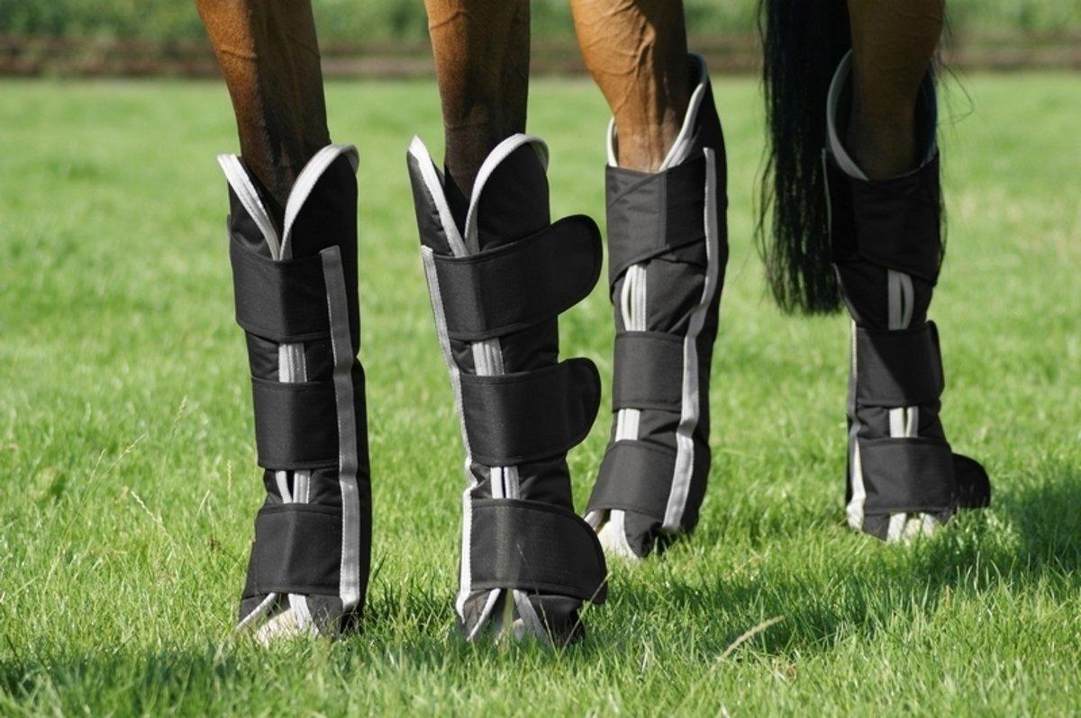 QHP Transportbeschermers Turnout - Black - Pony kopen