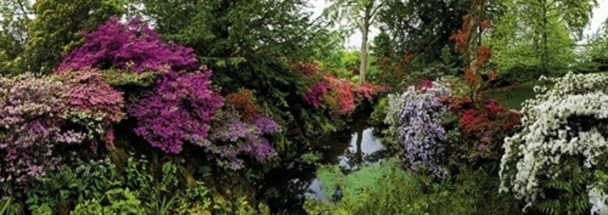 Bodnant Garden - Legpuzzel - 6000 Stukjes