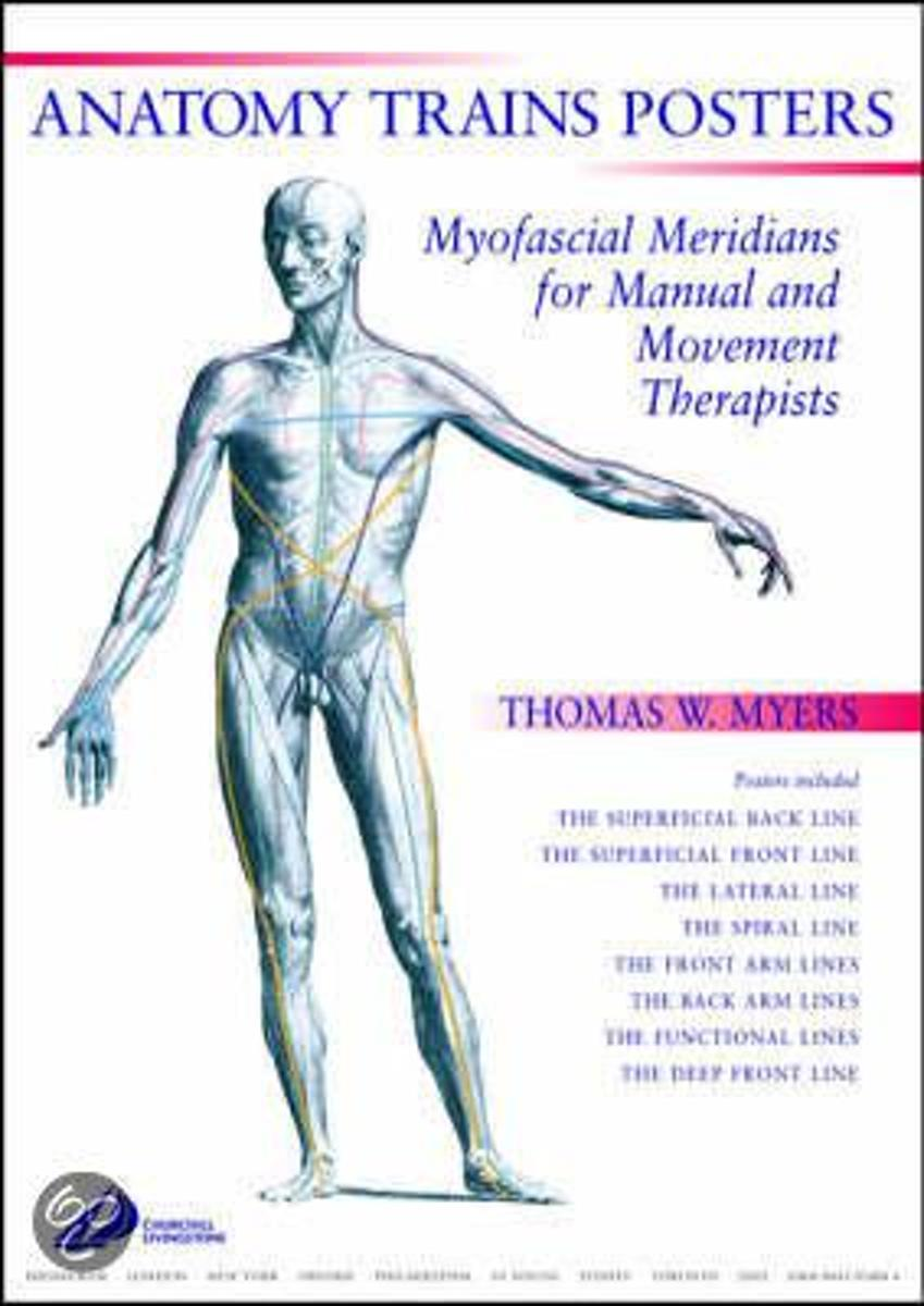 Funky Anatomy Trains By Thomas Myers Festooning Physiology Of