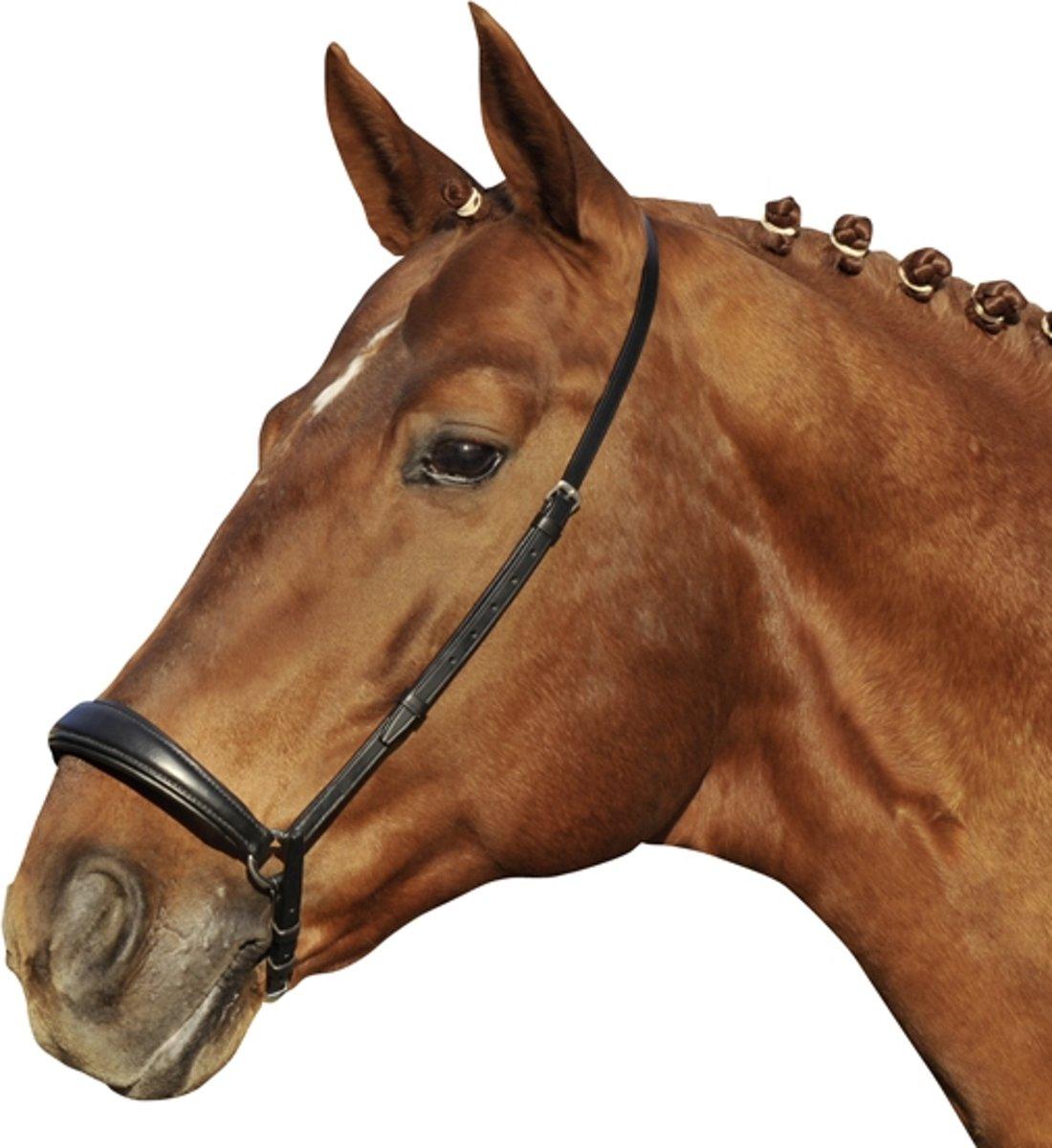 Neusriem -Hannover- zwart Pony kopen