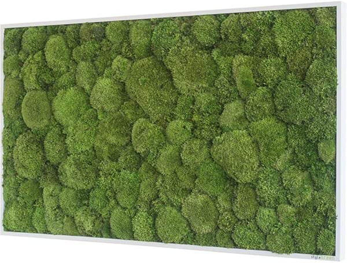 Verticale tuin - Pole moss - 100 x 60cm